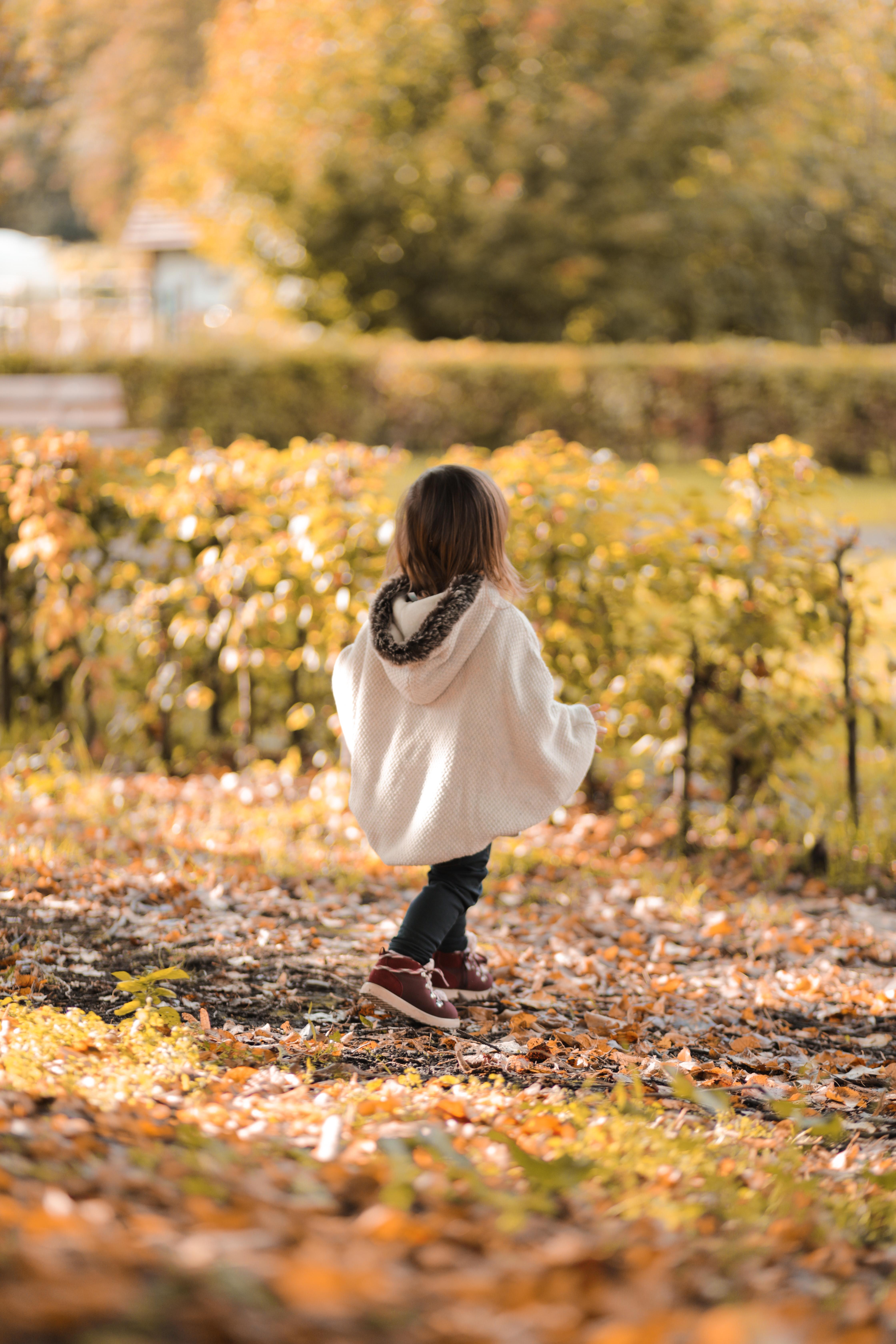 automne look